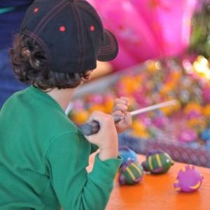boy at the fair