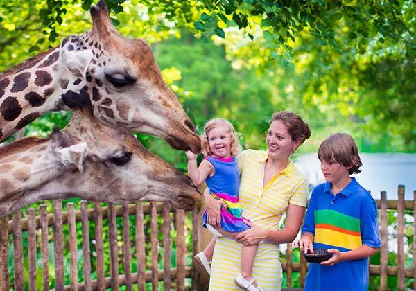 pediatric dentistry orthodontics sun valley pediatric dentistry mesa az home hero pediatric braces and orthodontics